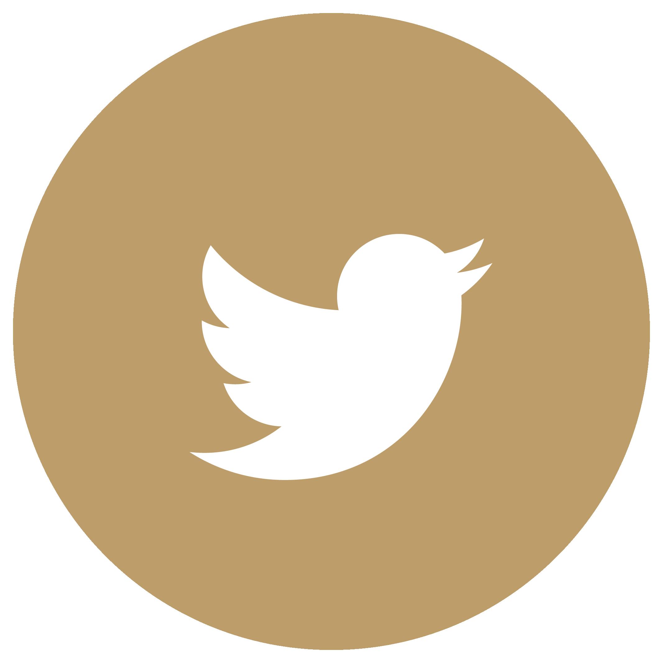 Icoon Twitter