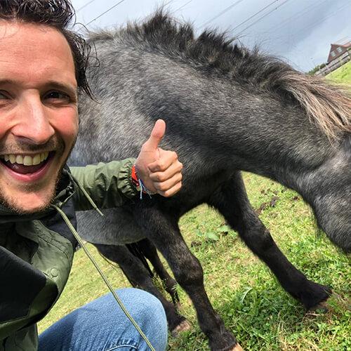 Arno Degradé paard