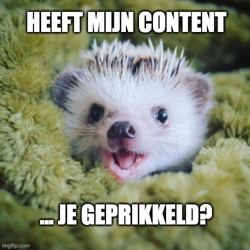 Prikkelende content egel meme